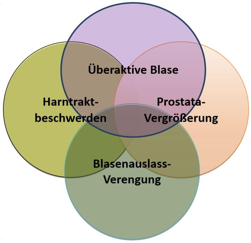 Harntraktbeschwerden, Prostatabeschwerden, Überaktive Blase leitlinien-un-gerecht als sich überlappende Symptomkomplexe dargestellt