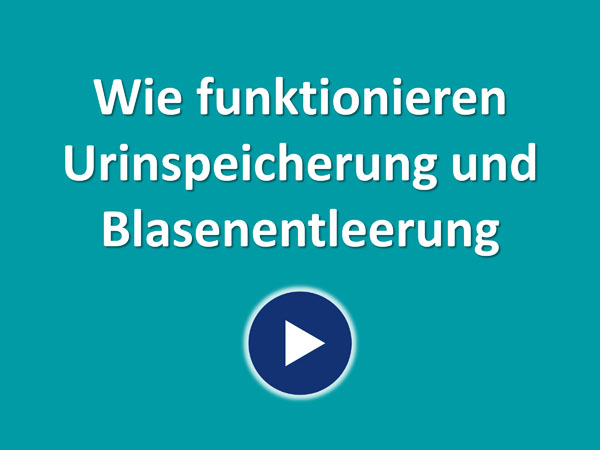 """Zum Video """"Wie funktionieren Harnspeicherung und Blasenentleerung?"""""""